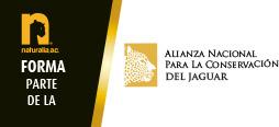 alianza2017